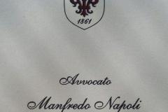 Studio Legale Avvocato Manfredo Napoli